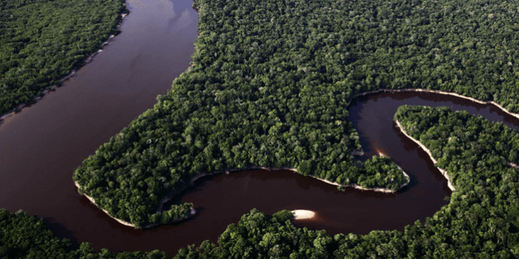 longest river in the world amazon river