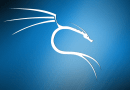 Learning Penetration Testing with Kali Linux