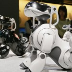 Aibo 2.0 is coming back?