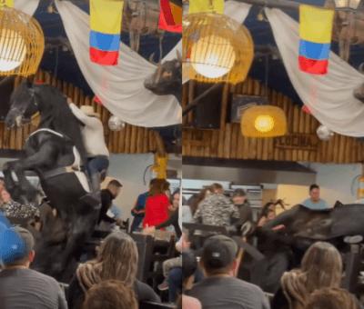 Polémica por la caída de un caballo durante un show en un restaurante en Bogotá