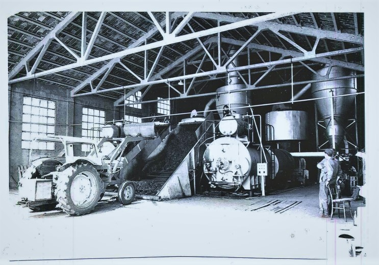 Deshidratadora de alfalfa de Binéfar en 1959