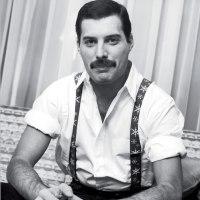 Nowa książka od Freddiego