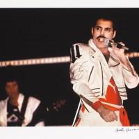 Zdjęcie Freddiego na aukcji w Desie