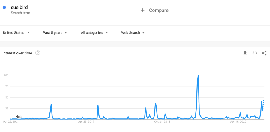 Searches for Sue Bird have held relatively consistent on Google Trends with a pop in 2019 accompanying her coming out with Megan Rapinoe