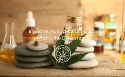 Broad vs. Full Spectrum CBD: What's the Difference?