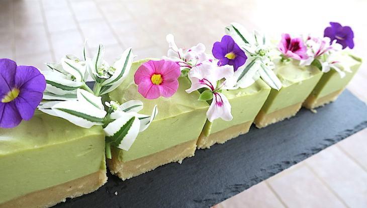Sugar Free No-Bake Avocado Silk Cake
