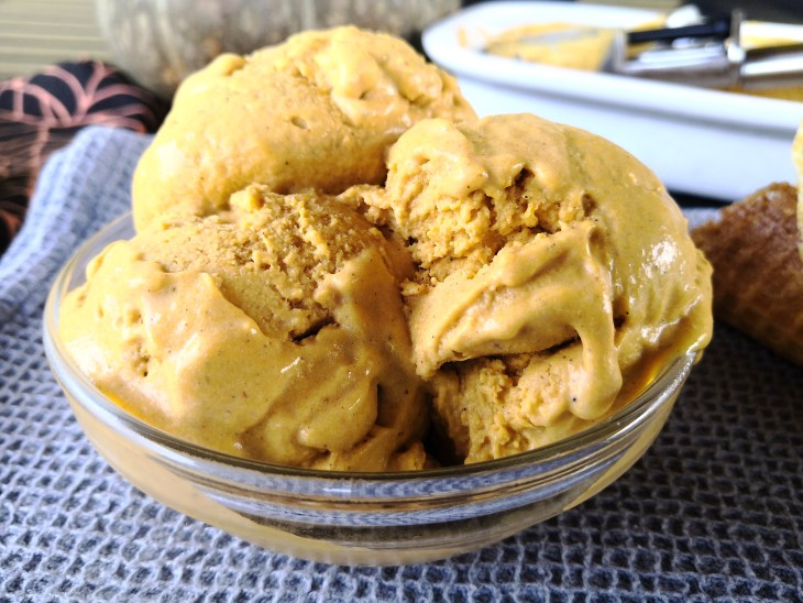 Keto Sugar Free Pumpkin Pie Spice Ice Cream