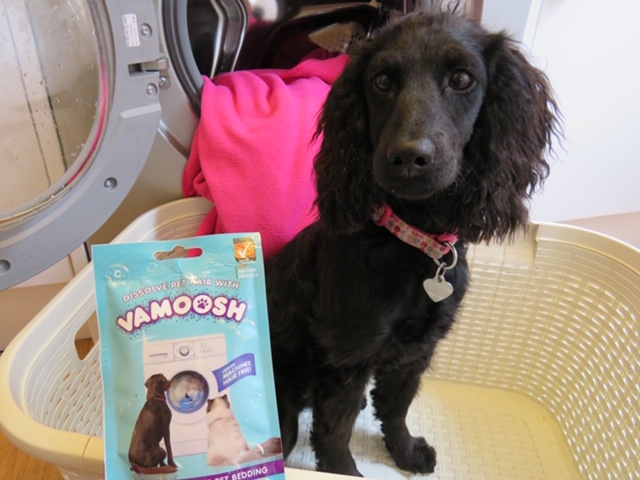 Dissolve pet hair with Vamoosh