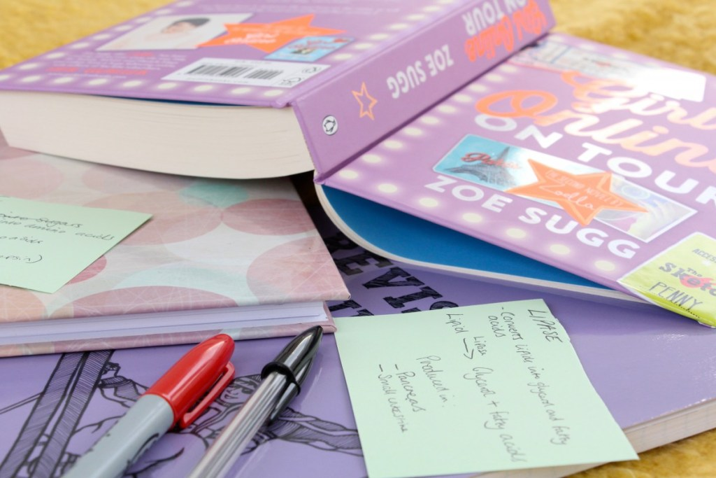 Reading VS Revision – How to Survive School