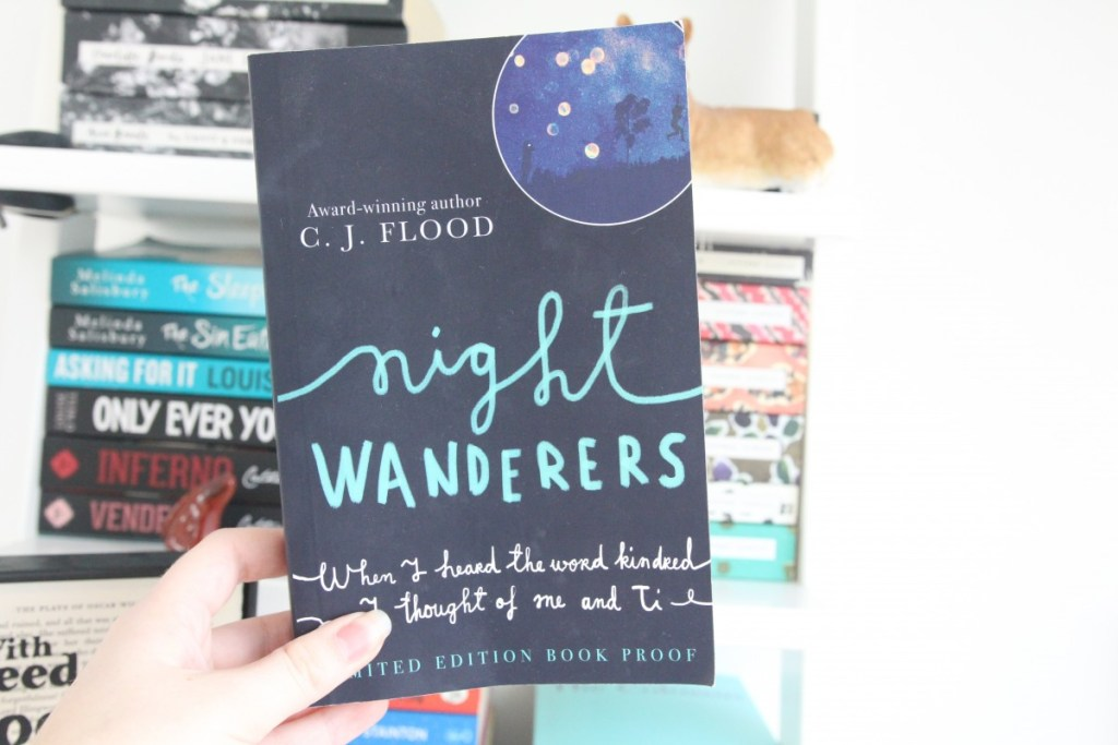 REVIEW: Nightwanderers by C.J. Flood