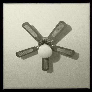 leland black and white ceiling fan
