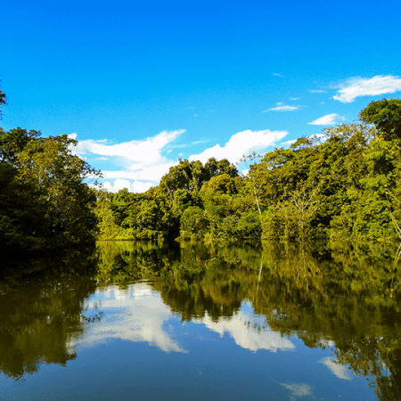 The Amazon River – The Giver of Life of the Rainforest