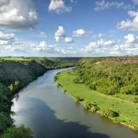 The Amazon Rainforest – Lungs of the World?