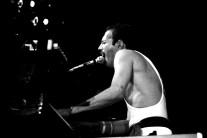 Freddie - Live At Wembley Arena 7th September 1984