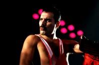 Freddie - The Works