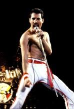 HS tour '82-Freddie