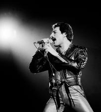 Freddie, live at the Rosemont Horizon, Rosemont, Illinois, September 19, 1980. By Paul Natkin