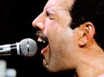 Freddie in 1982