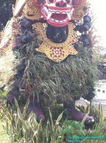 Bromeliad Dragon (4)