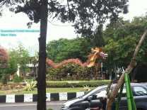 Bromeliad Dragon (6)