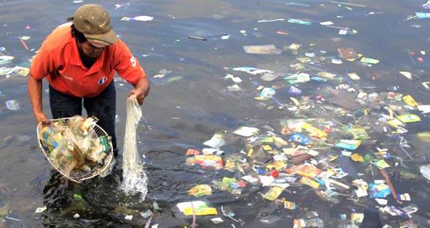 El plástico que arrojamos al mar termina contaminando y matando peces.