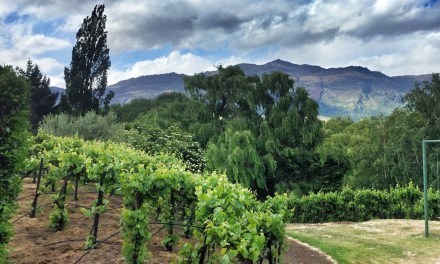 Staycation in Queenstown: Staying at Manata Lodge