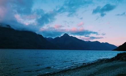 Snappers Queenstown Early Morning Friday