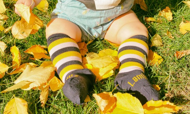 Lamington Socks New Zealand
