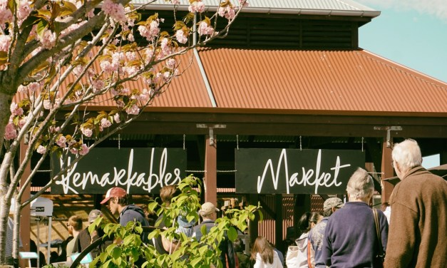Remarkables Market 2018-2019