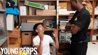 180507_young-perps_01_pic01