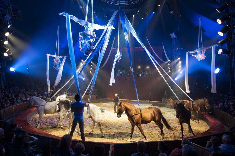 Quintessence Du Cirque Gruss Que Faire Paris