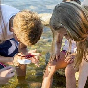 Balade de sensibilisation sur la biodiversité du littoral avec BioLit