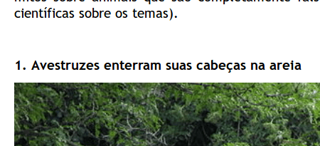 Seleção_016