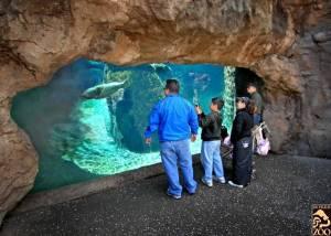 Los Angeles Zoo1