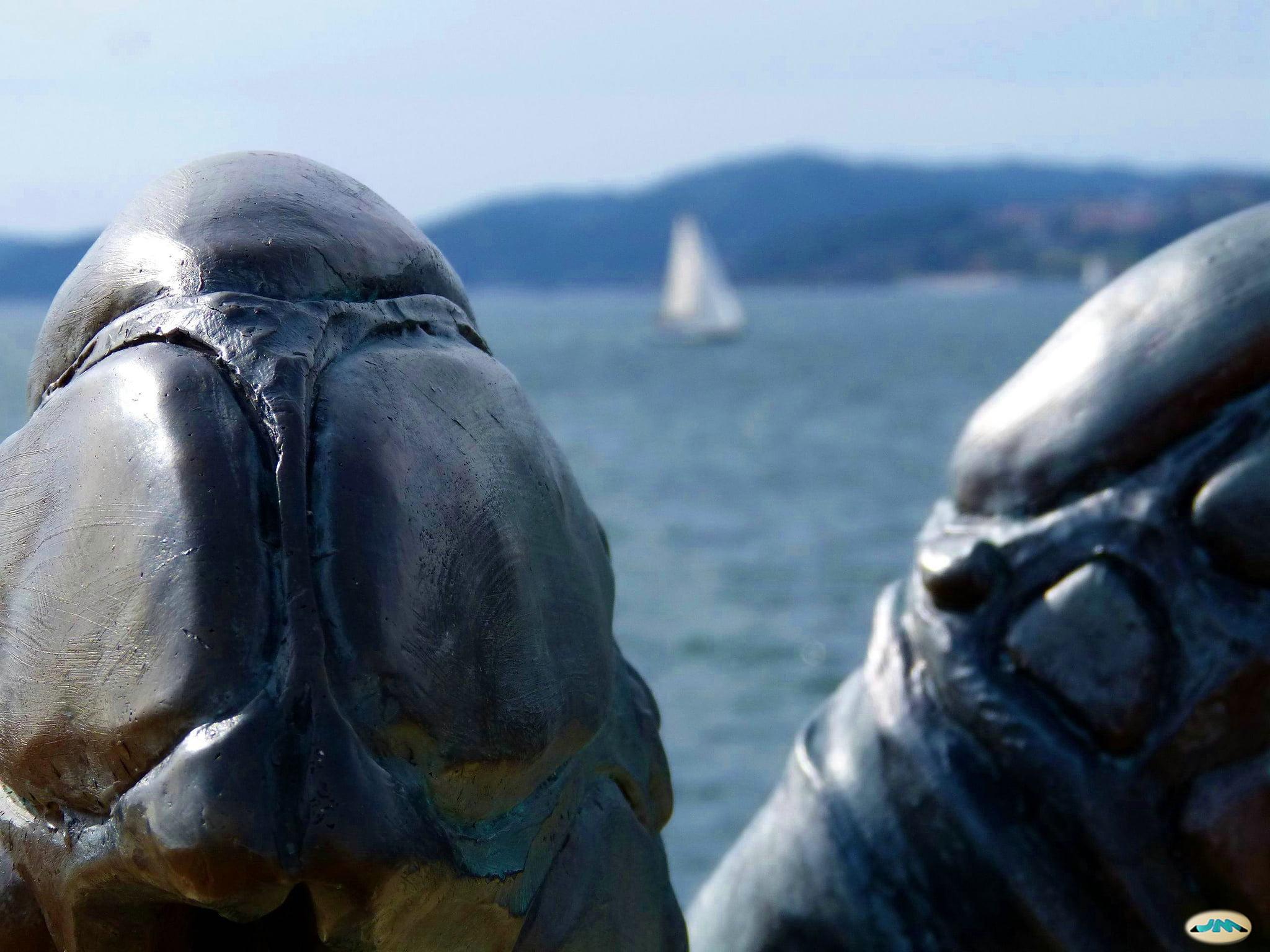 Paseo dos Peixes de Bouzas – Vigo