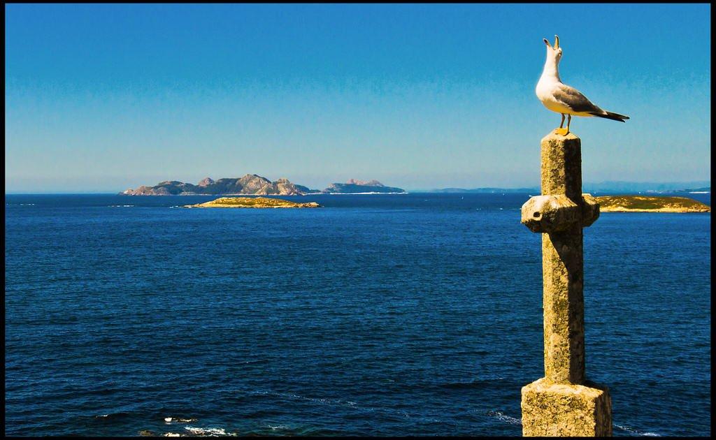 Nuevas excursiones a las Islas Cíes, Isla de Ons, Isla de San Simón e Isla de Sálvora.