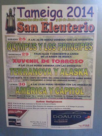 Fiesta de Tameiga 2014