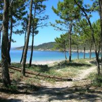 Vigo y sus playas nudistas
