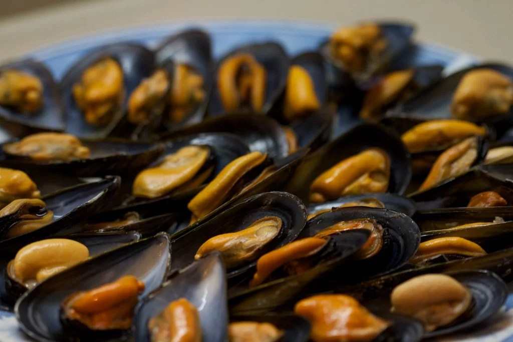 Fiesta Gastronómica del Mejillón (A Guarda)