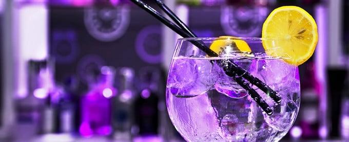 Fiesta Gin Premium Seagram's