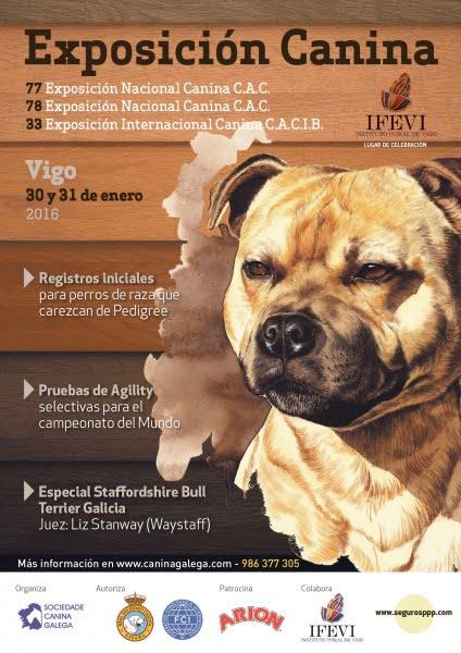 Exposición Internacional Canina de Galicia