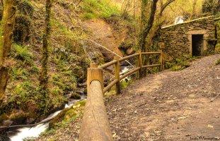 Camiño a camiño 2017: Senda pola Ribeira do Río Eifonso