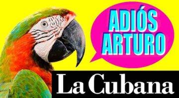 Adiós Arturo – La cubana