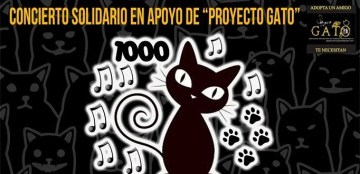 Concierto benéfico 1000 Gatos y The Pelos Band