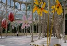 flores palacio de cristal