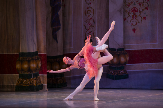 the-nutcracker-san-antonio-sugar plum