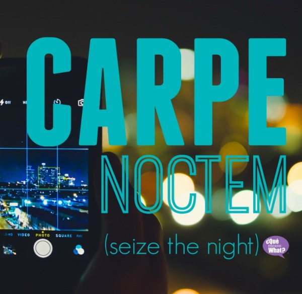 CARPE NOCTEM Seize the night - Night Owl Remorse or Productivity - Que Means What