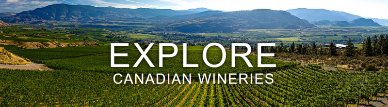 411-wineries-lead