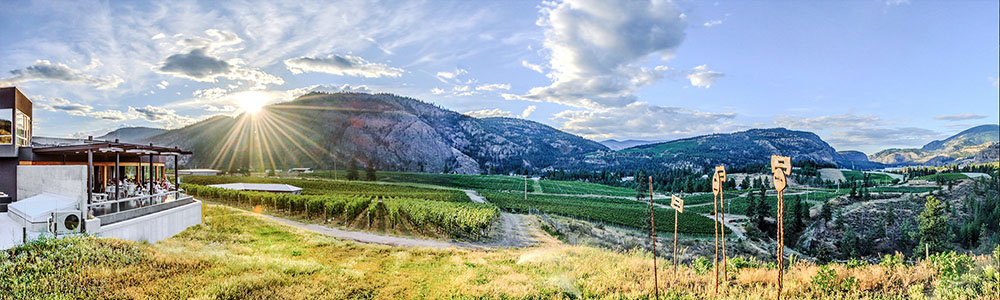 Okanagan Falls Wineries Associations