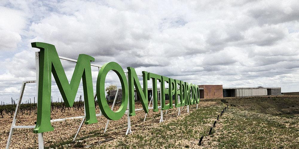 Rueda - Montepedroso